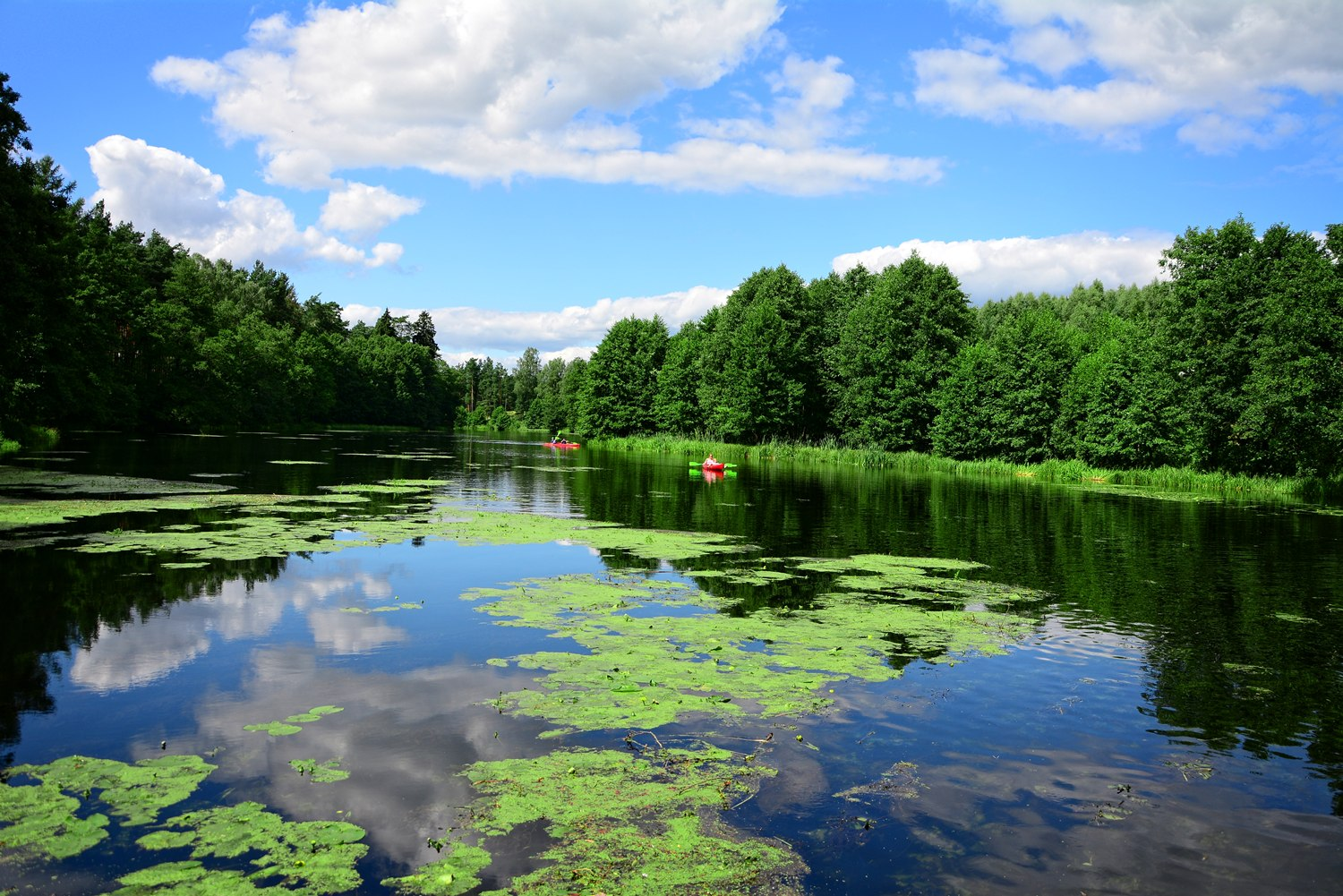 polish touristic attractions national parks in poland kayaking