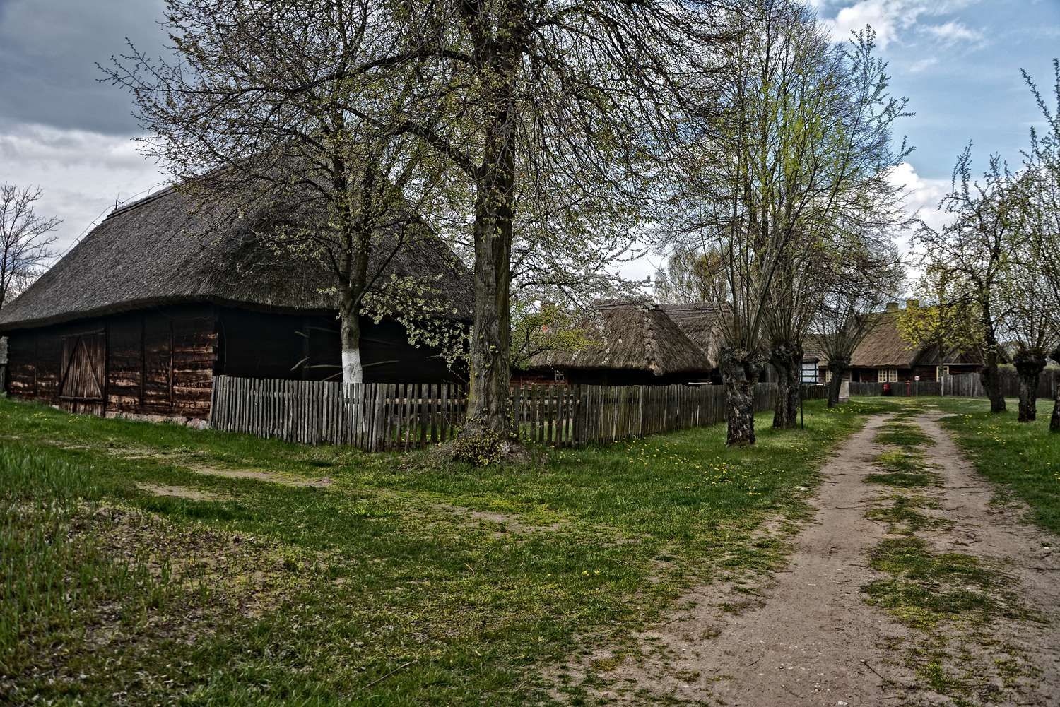 witcher polish villages velen