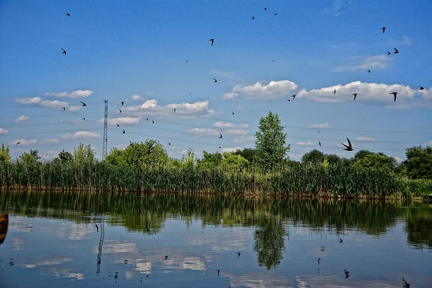 swimming warsaw lakes in warsaw czerniakow where to go swim