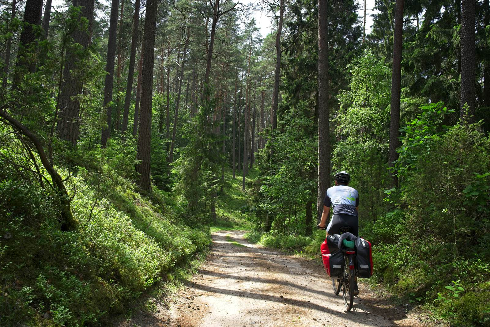 biking in mazury warmia forest łajs