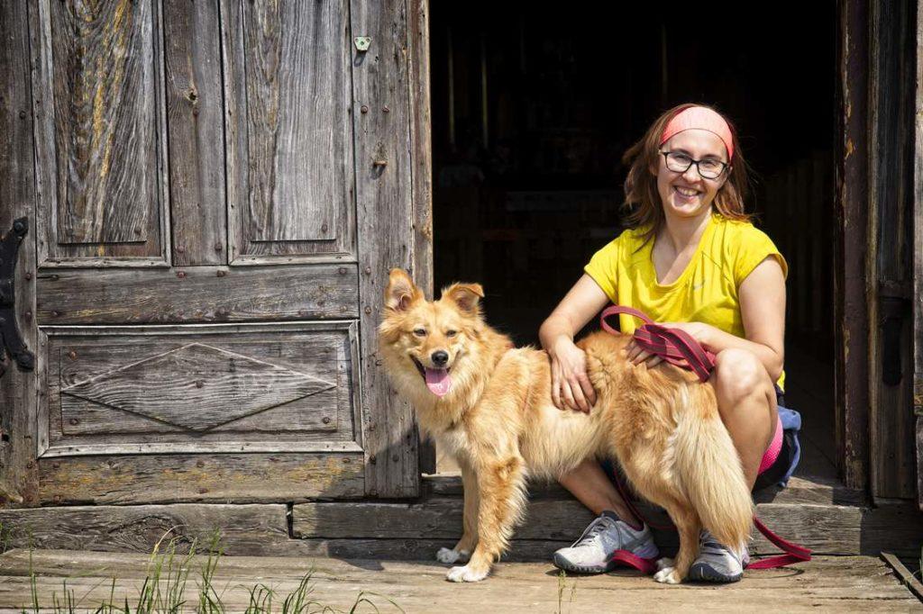 how to remove a tick dogs ticks poland
